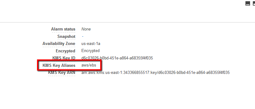 If Encrypted parameter value is 'Encrypted' and the KMS Key Aliases value is 'aws/ebs'